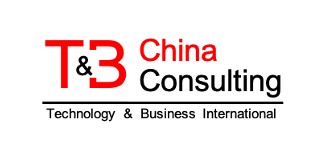 China Technology & Business Consulting